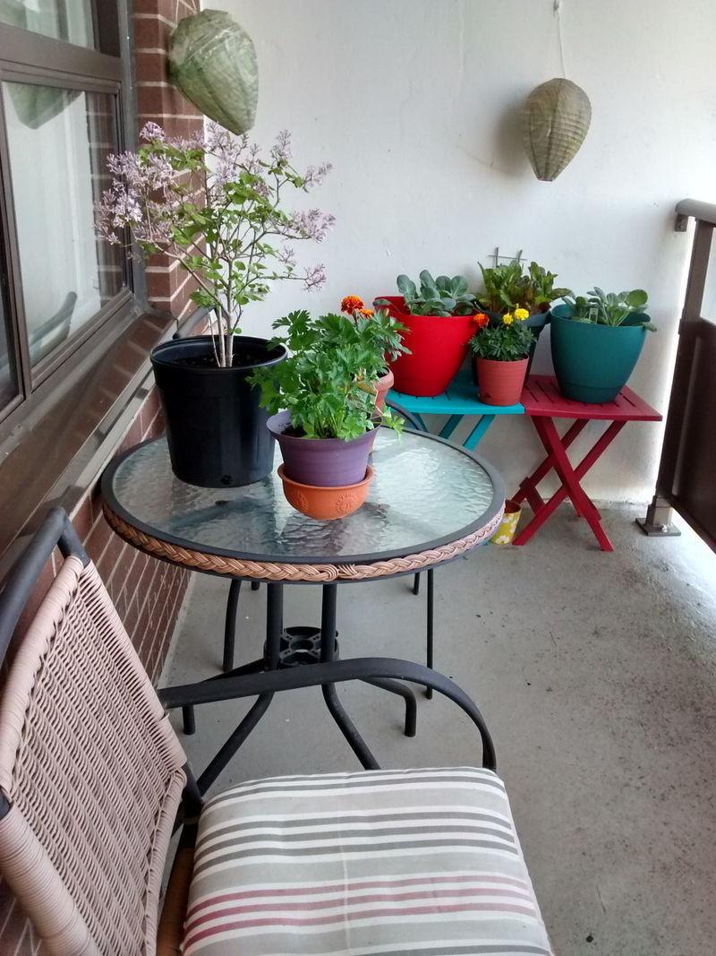 Một vài thay đổi nhỏ với bàn ghế và chậu cây là bạn đã sở hữu một không gian thư giãn tuyệt vời rồi đấy